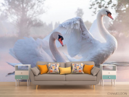 Фотообои Лебеди - 1