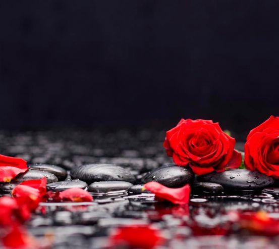 Фотообои Розы на камнях 13763