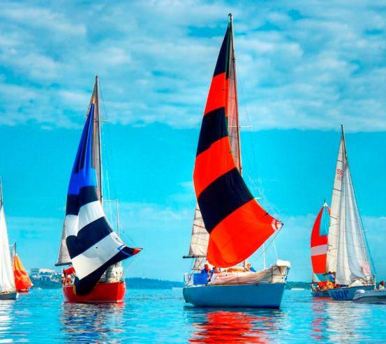Фотообои Разноцветные паруса 8985