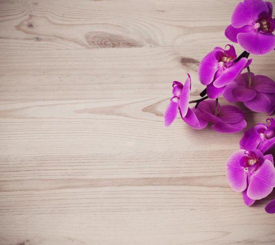 Фотообои фиолетовая орхидея на деревянном фоне 20880