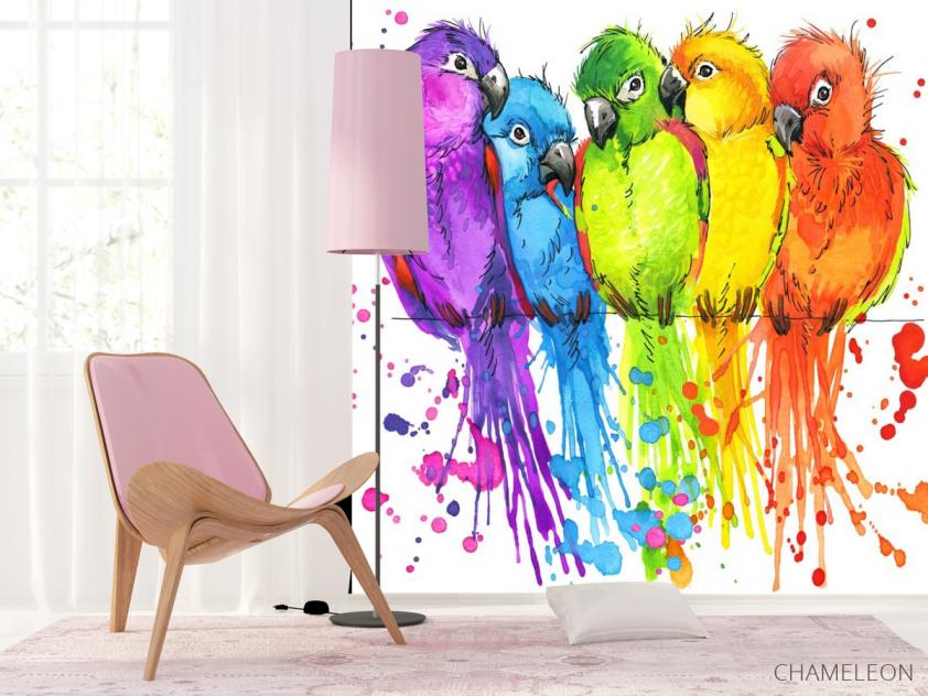 Фотообои пять разноцветных попугаев рисунок - 4