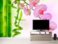Фотообои Орхидеи и бамбук - 2