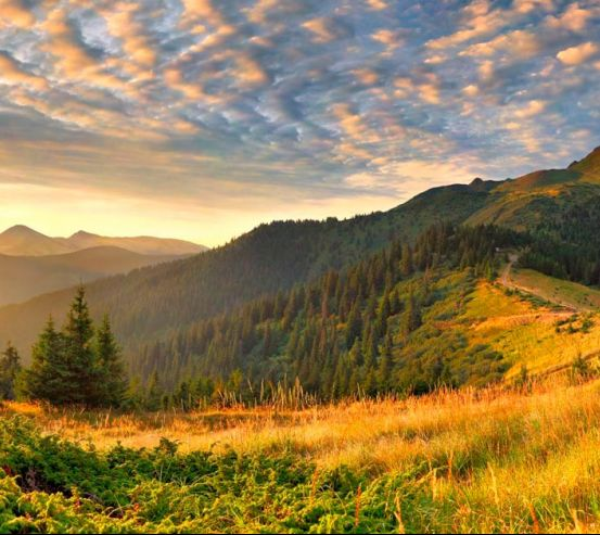Фотообои Луг в горах  0381