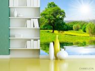 Фотообои Солнце, вода, дерево - 3