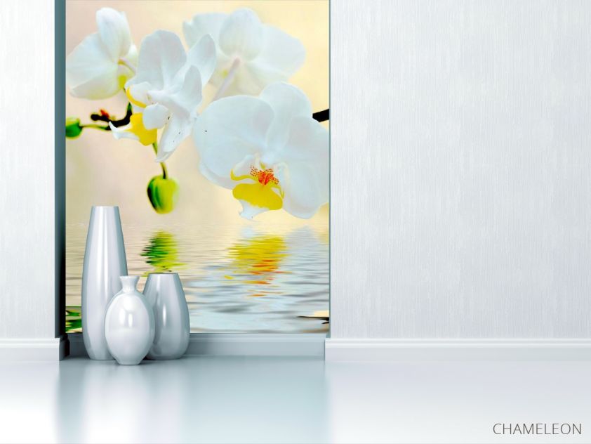 Фотообои Белоснежные орхидеи в воде - 1