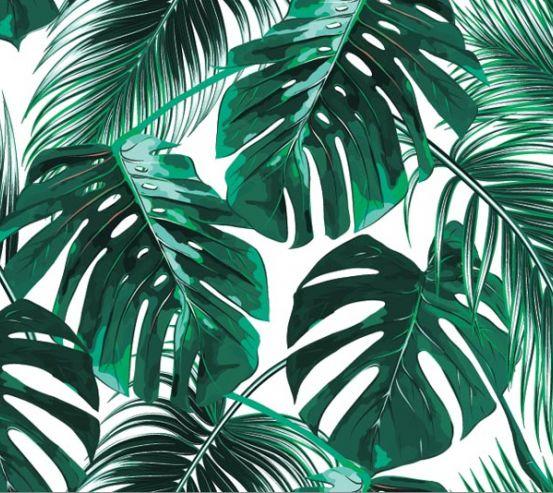 Фотообои Тропические листья 18803