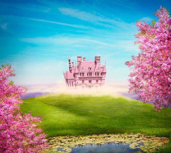 Фотообои Розовый замок 18816