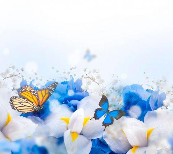 Фотообои Цветы с бабочками  19440