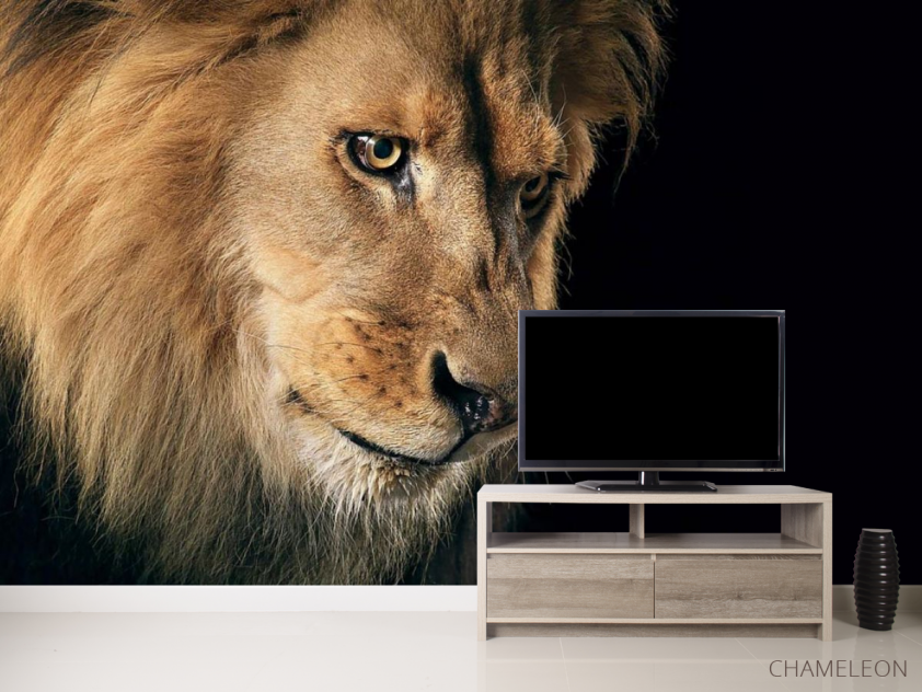 Фотообои морда льва - 2
