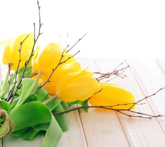 Фотообои Букет из желтых тюльпанов 9111