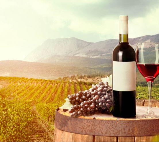 Вино 17613