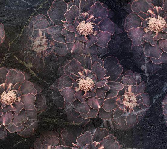 Фотошпалери темні квіти 26188
