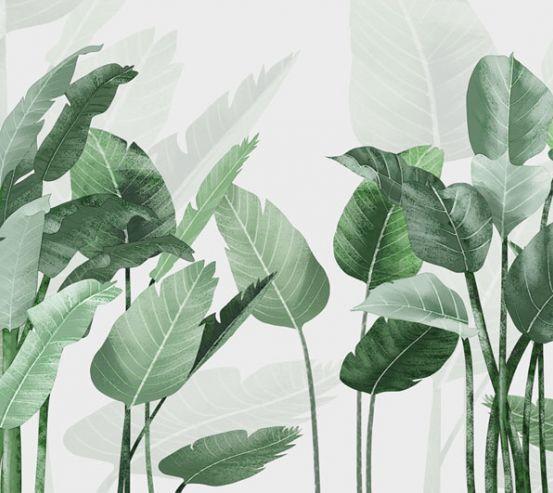 Фотообои Банановые листья 22947