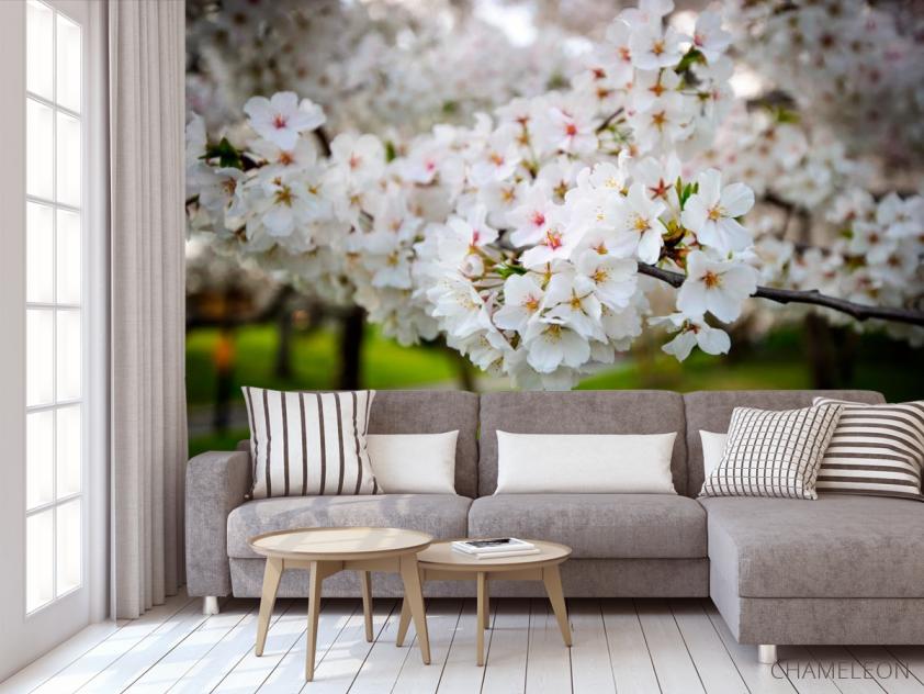 Фотообои Абрикосовые маленькие цветочки - 3
