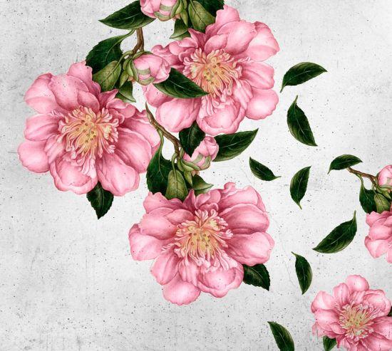 Фотообои Рисованные цветы на стене