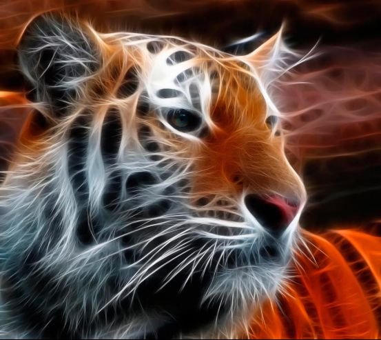 Фотообои Огненный тигр 9904