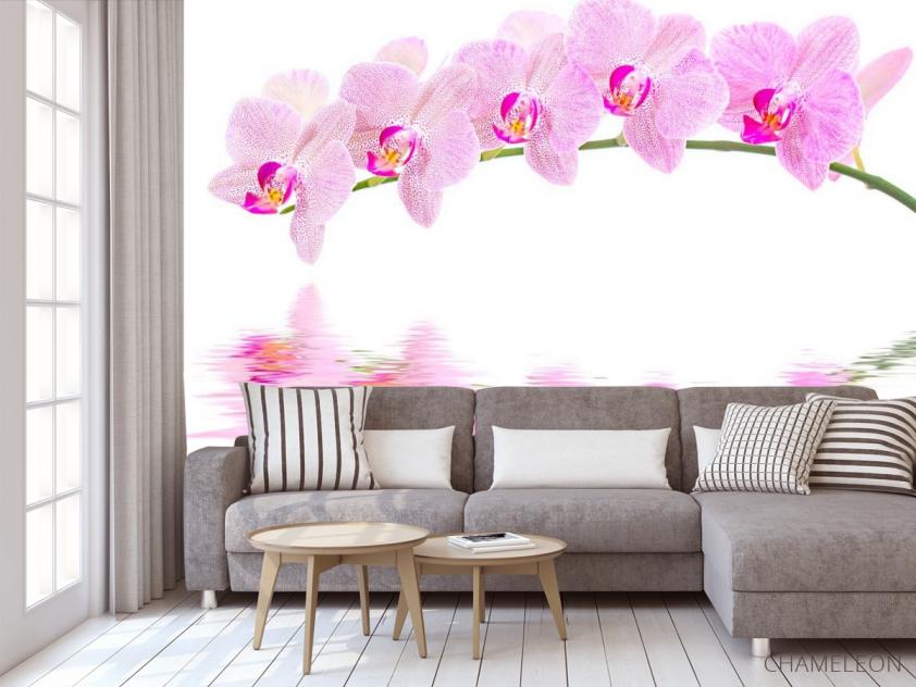 Фотообои Отражение орхидей - 3