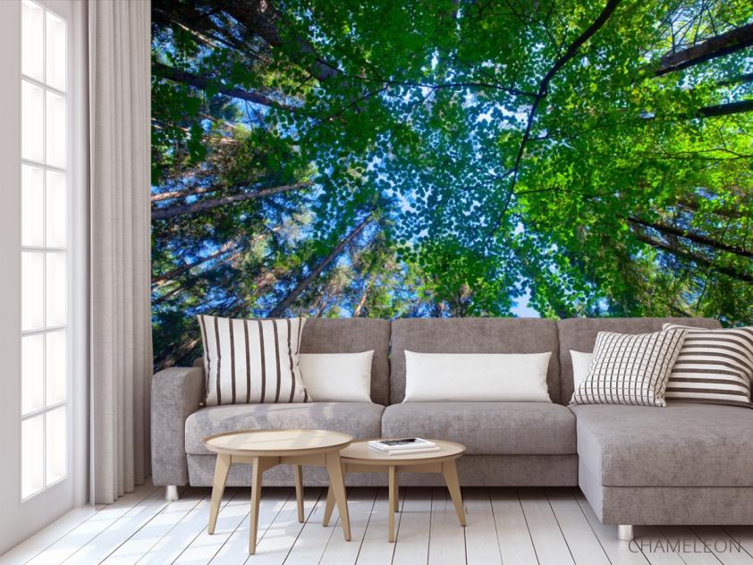 Фотообои деревья для потолка - 3
