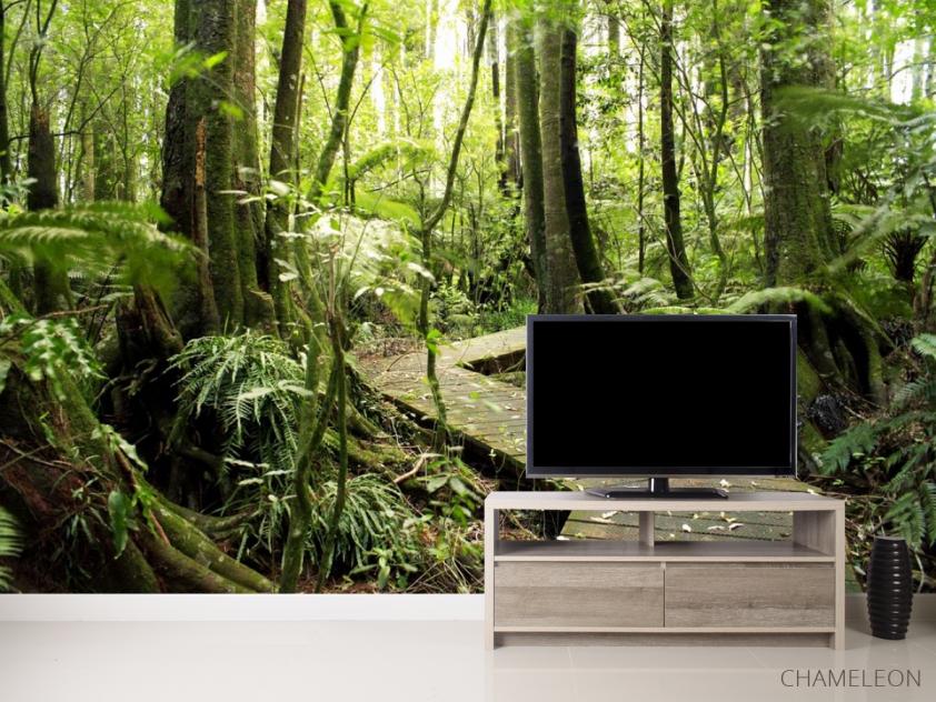 Фотообои деревянная дорожка в лесу - 2