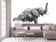Фотообои семья слонов - 3