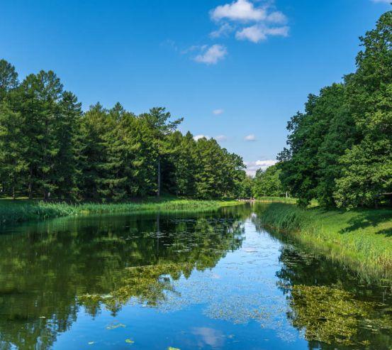 Фотошпалери Річка в лісі 23153