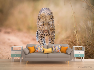 Фотообои гепард - 1
