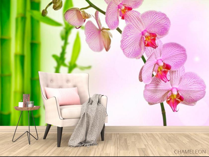 Фотообои Орхидеи и бамбук - 4