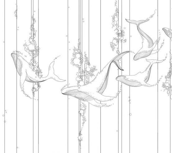 Фотошпалери Лінійні кити 26156