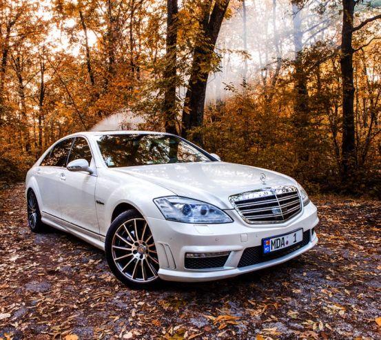 Фотообои белая машина в лесу 21468
