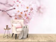 Фотообои Цветущий весной абрикос - 4