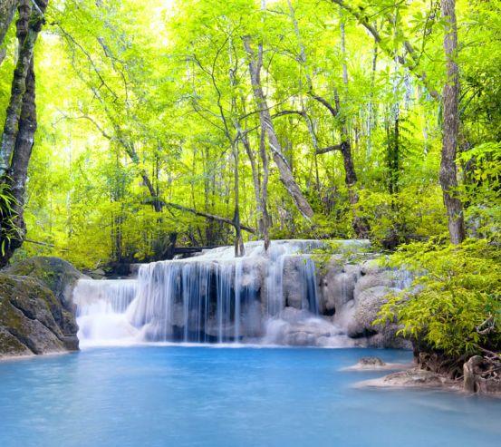 Фотообои Водопад и деревья 23333