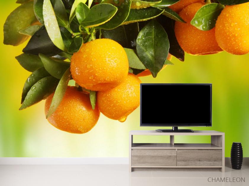 Фотообои Сочные апельсины - 2