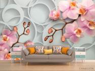 Фотообои Розовые орхидеи - 1