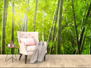 Фотообои бамбуковый лес - 4