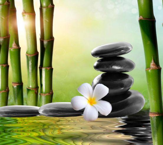Фотообои Камни, цветок, бамбук 9016