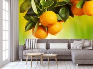 Фотообои Сочные апельсины - 3