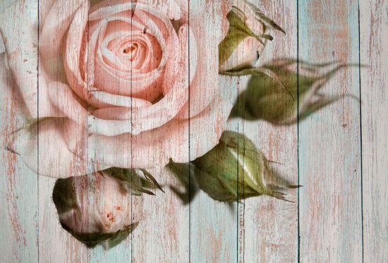 Фотообои Роза на фоне дерева