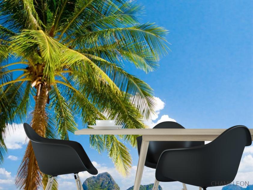Фотошпалери пальма на березі моря - 1