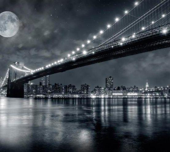 Фотообои Мост и луна, New York 8070