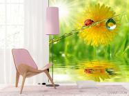 Фотообои божья коровка на листике - 4