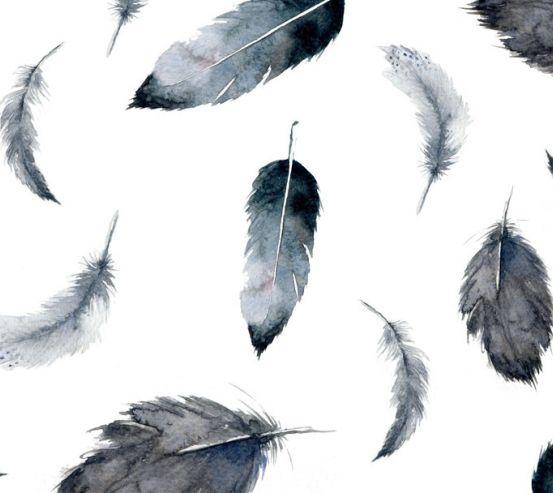 Фотообои перья воздушные 20157-h