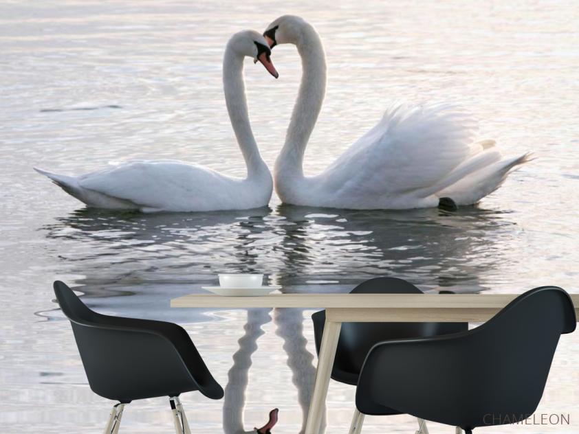 Фотообои Два лебедя - 1
