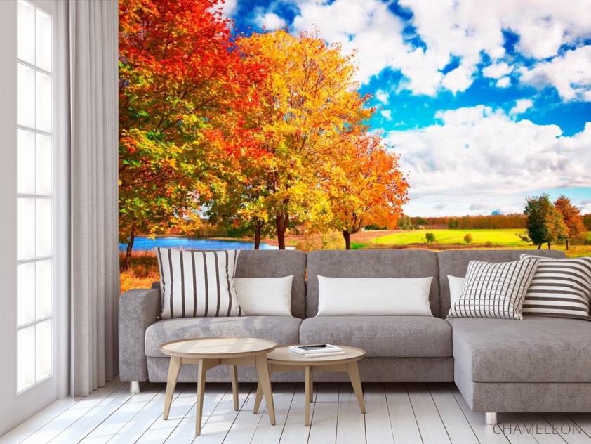 Фотообои Осень, деревья - 3