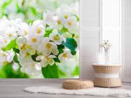 Фотообои Абрикосовые маленькие цветы - 2