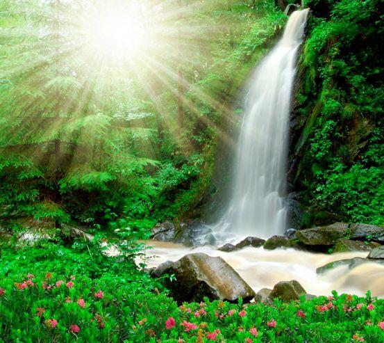 Фотообои Солнце, ручей  0127