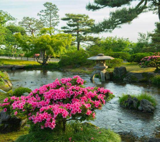 Фотообои Японский сад 27387