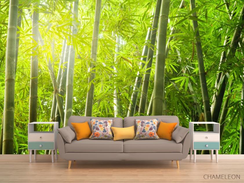 Фотообои бамбуковый лес - 1