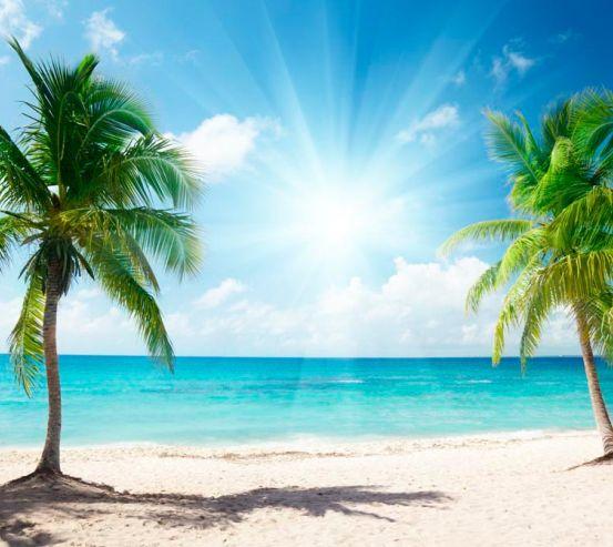 Фотообои Ясный день на пляже 7641