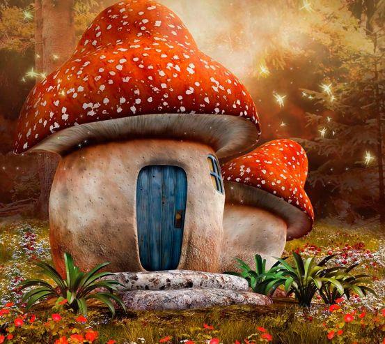 Фотообои Сказочный гриб 18812