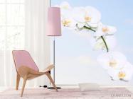 Фотообои Ветка белоснежных орхидей - 4
